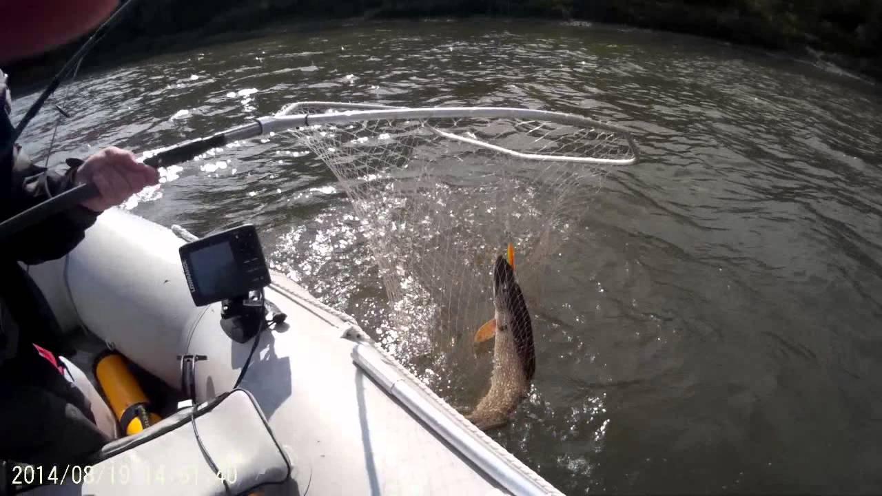 рыбалка на томи за щукой