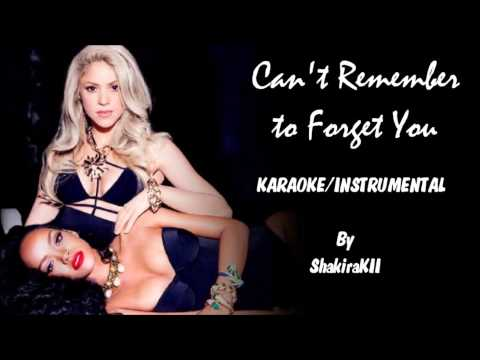 Shakira ft. Rihanna - Can't Remember To Forget You Karaoke / Instrumental with lyrics on screen