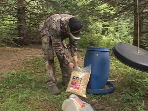 Nourrisseur à chevreuil : une alternative à l'appâtage