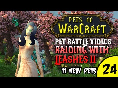 Pets of Warcraft Video 24 - Raiding with Leashes II - The World of Warcraft Battle Pet Vlog