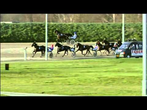 Vidéo de la course PMU FLEVOFARM CUP