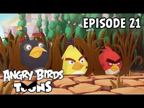 Angry birds - S2 Ep21 - Jídlo
