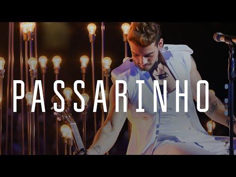 Lucas Lucco - Passarinho (DVD O Destino - Ao vivo)