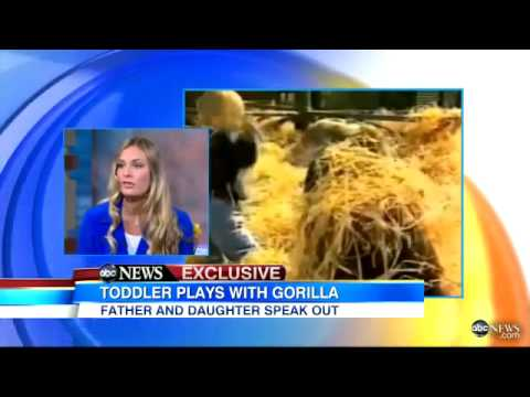 Toddler Plays With Gorilla  Caught on Tape, Father Discusses in Exclusive Interview   YouTube