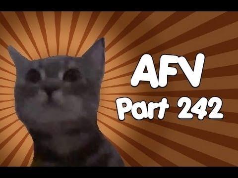Home Videos - Part 242