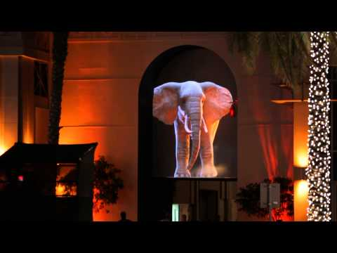Dubai Festival of Lights 2014 - Elephantastik