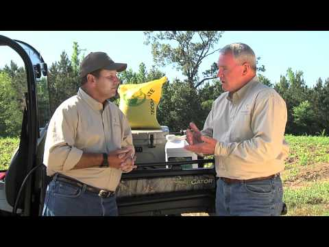 Perennial Food Plots - 2011 Bucks of Tecomate - Extended Management Minute 9