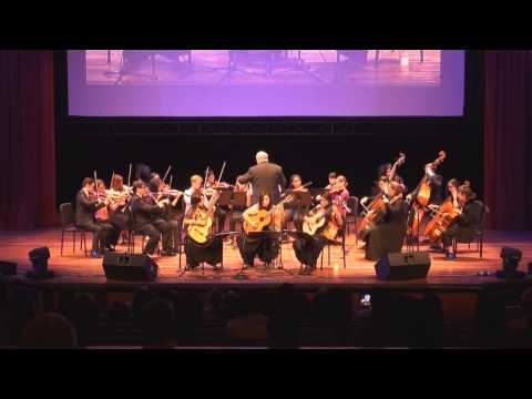 A Gala Concert in Aid of the Philippine Typhoon Haiyan-featuring Triple Fret