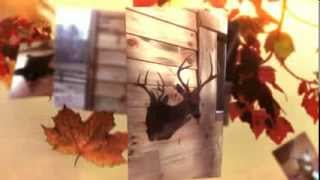 [Mounting Memories Taxidermy - (336) 831-3369] Video