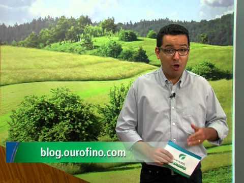 Reprodução, Controle de Parasitas, Secagem das Vacas - Ourofino em Campo - 30/09/2013
