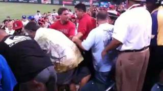 Angels baseball fan fight