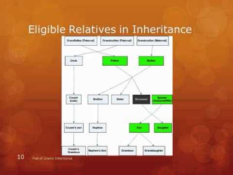 Islamic Inheritance 06 Inheritance Chart Youtube