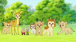 Leví kráľ Simba - 12 - Futbal