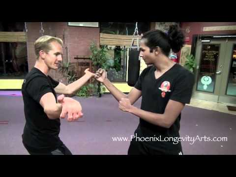 Tiger Kung Fu FIghting Technique 1