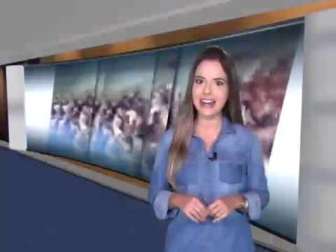 CONTEÚDO MMTV 330 (24/01/2016)  Trigésima Quarta Exposição Nacional do Marchador! O evento marcou o calendário de 2015 da ABCCMM. E, é claro, ficou na memória dos apaixonados pela raça. Clima de emoção e solidariedade. Com o tema Marchadores pela Vida, a Exposição mostrou que o Mangalarga Marchador pode e deve fazer a diferença na vida de muitas pessoas que precisam de ajuda. / Na cerimônia de abertura, a novidade foi a participação da Orquestra Sinfônica de Minas Gerais, que fez uma apresentação de gala. O hino do marchador ganhou uma versão especial. VT CERIMÔNIA ABERTURA NACIONALPGM 304  Se o importante é competir, vencer um campeonato nacional de marcha é uma glória para poucos! / E olha que escolher o melhor entre os melhores não foi nada fácil./ Participaram das competições cerca de 1.500 animais de alta qualidade genética./ Vamos rever agora os campeões dos campeões de marcha e da raça de 2015./ O melhores na marcha batida e na Marcha picada. Animais que entraram para a história da raça Mangalarga Marchador./ VT MELHORES ANIMAIS- PGM 305  Esforço e paixão!!! Eles passam o ano todo investindo na seleção e no treinamento dos animais. / Percorrem todo o país e participam de várias exposições especializadas e copas de marcha. / O objetivo principal é chegar com os animais ao Parque da Gameleira, em Belo Horizonte. É lá que todo   o trabalho é recompensado. Vamos rever agora quem foram os melhores criadores e expositores da 34ª Exposição Nacional./ VT MELHORES CRIADORES E EXPOSITORES-  PGM 305 Disputa acirrada no Caminhos do Marchador! Uma diferença de milésimos de segundos definiu os vencedores da prova de maneabilidade, que teve novidades em 2015./ Nos cinco tambores, o título também dependeu da habilidade dos cavaleiros e da velocidade dos animais. Um esforço enorme em busca do menor tempo, sem derrubar os obstáculos./ VT  CINCO TAMBORES E MANEABILIDADE – PGM 305  E a Exposição Nacional deu também exemplos de solidariedade. Criadores, expositores e apaixonados 