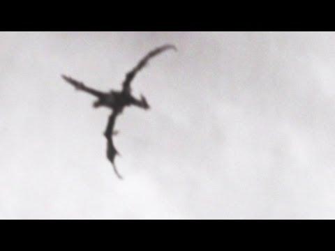 飛龍在天空?
