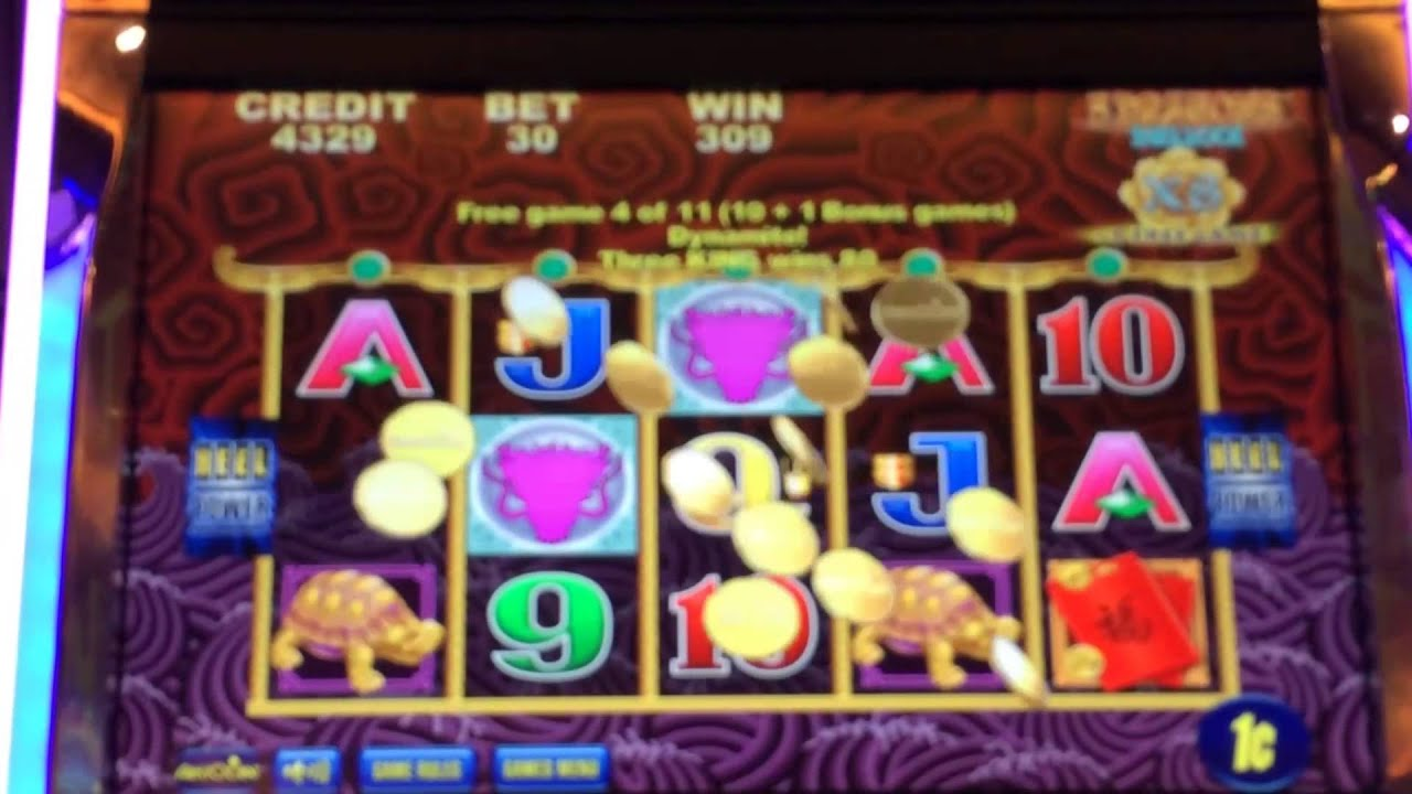 5 dragons slot machine videos live and maddie