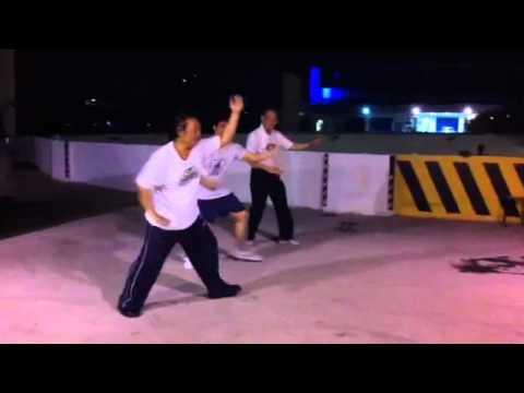 形意崩拳十二变法练习  Practising Xingyi