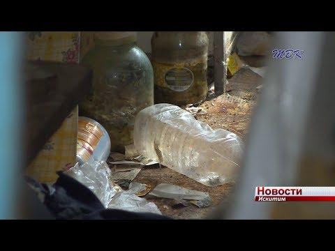 Жительница Подгорного микрорайона превратила квартиру в свалку