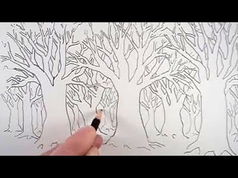 how to draw a forest easy