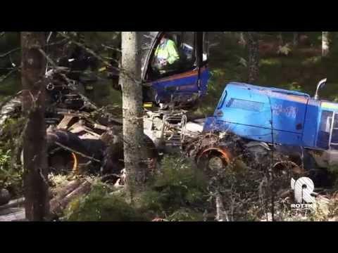Rottne H11 - Máquinas Florestais - Forestcorte