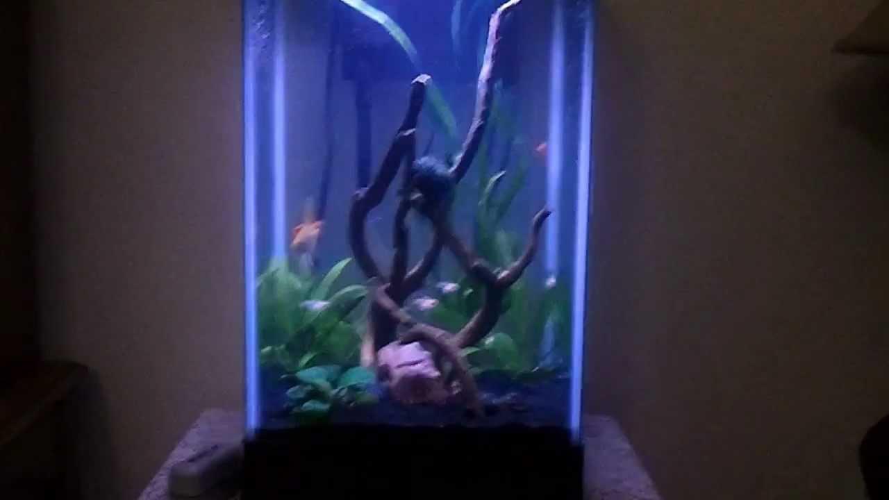 15 Gallon Column Aquarium