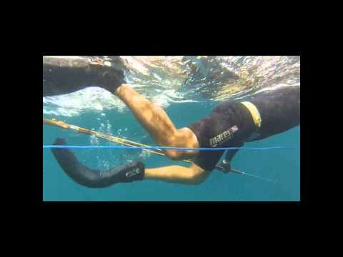 Spearfishing Siquijor January 2014