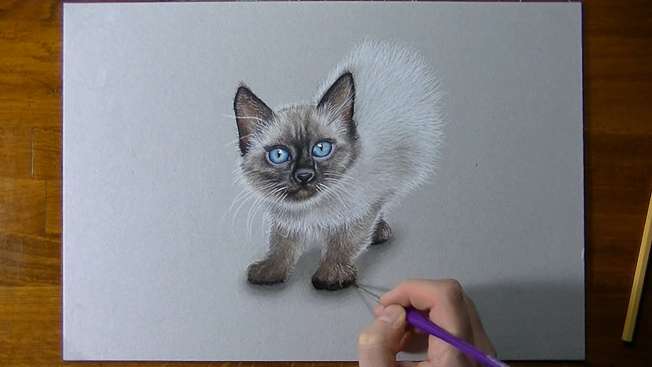 Comment dessiner un chaton ?