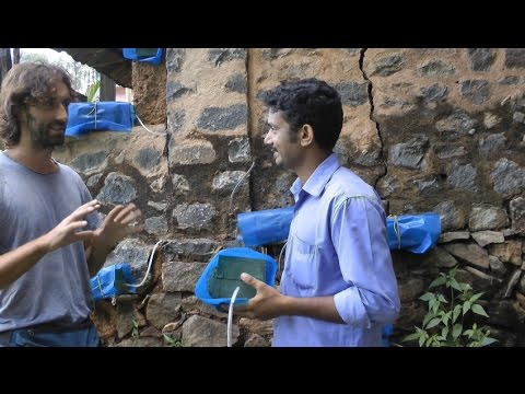 Stingless Bees / Meliponiculture Part 2 - Getting Bees out from a Wall! Including the Queen!