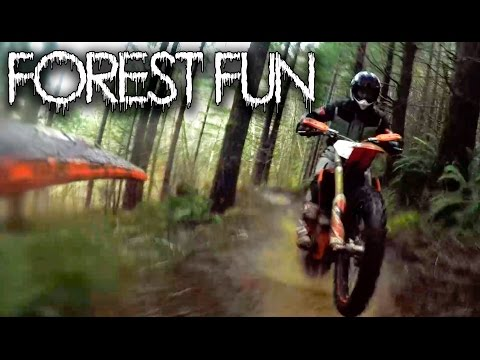 Forest Fun / KTM 450 XC / MotoGeo Adventures