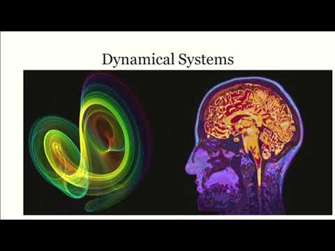 The Dynamic Brain: Leading-Edge Approaches From Human Neuroscience to Brain Functional Differences in ADHD, Autism and Neurodevelopmental Differences