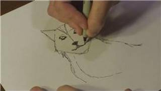 How To Draw Animals : How To Draw Real Wolves