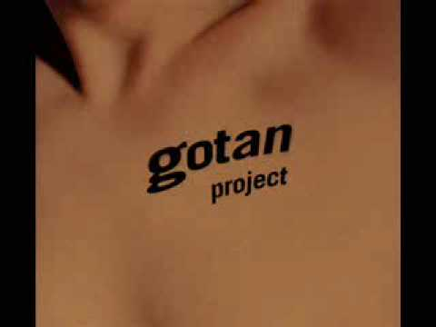 gotan project - shall we dance