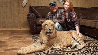 'We Live With 220 Lions And Tigers'
