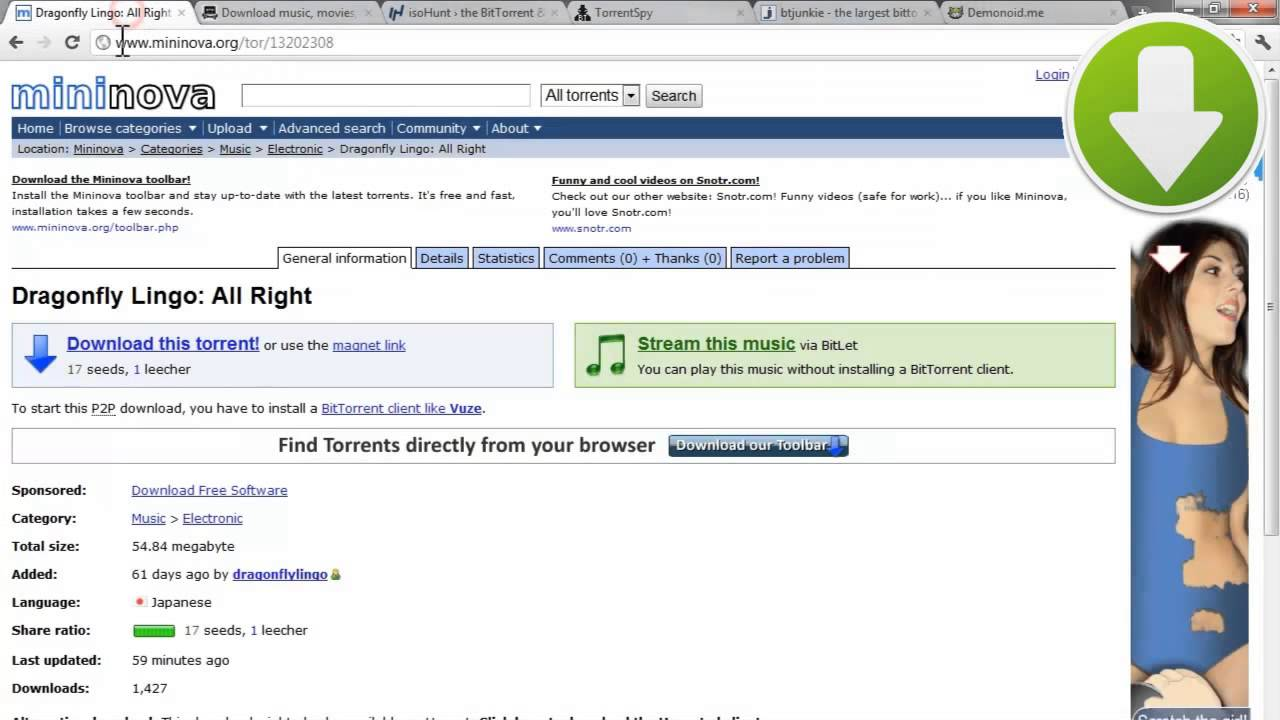 how to download bittorrent anonymously