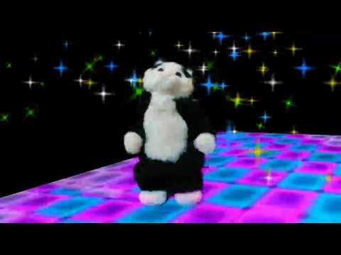 Dancing Cat Speaker