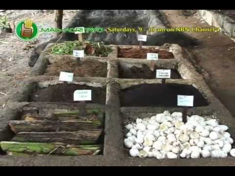 Vermiculture & Vermicomposting Part 1