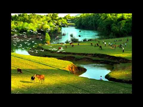 Nhac Hoa Tau VIET NAM Bat Hu | Best Vietnamese Instrumental Music - Part 2