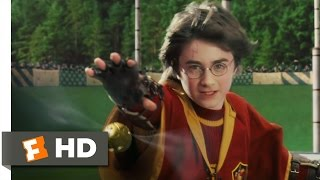 Harry Potter And The Sorcerer's Stone (4/5) Movie CLIP