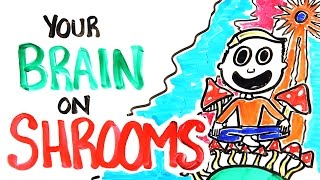 How Mushrooms Make You Trip