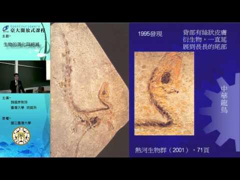 五、展翼天空:恐龍的古生物學與鳥的起源