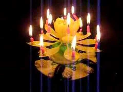 The Crazy Flower Candle Youtube