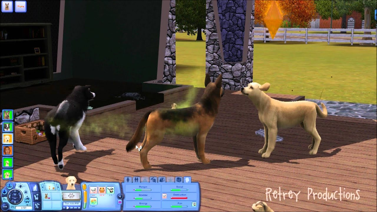 Sims  Cats And Dogs Mating
