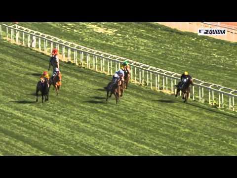 Vidéo de la course PMU PRIX DE GOUZON