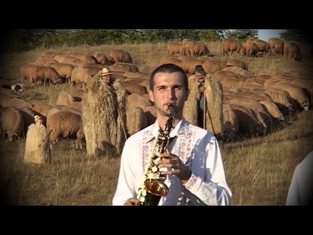 Gabi Nicolae   Merg ciobanii sus in munte