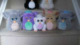 My 2005 Version Furby Collection. (A MUST SEE FOR FURBY FANS!)