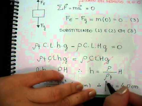 Fluidos - Exercício 4: Principio de Arquimedes
