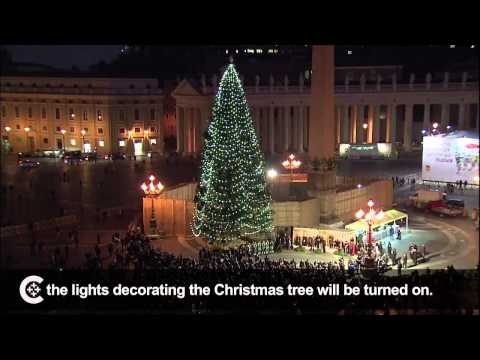 Pope Francis welcomes Christmas tree lighting