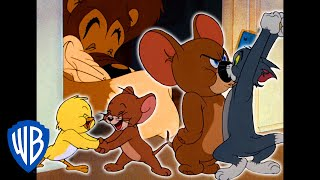 Tom a Jerry - Jerryho superteam