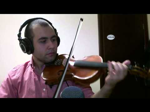 David Guetta - She Wolf ft. Sia Violin Cover